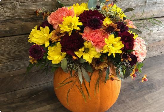 Flowers Thanksgiving Fall